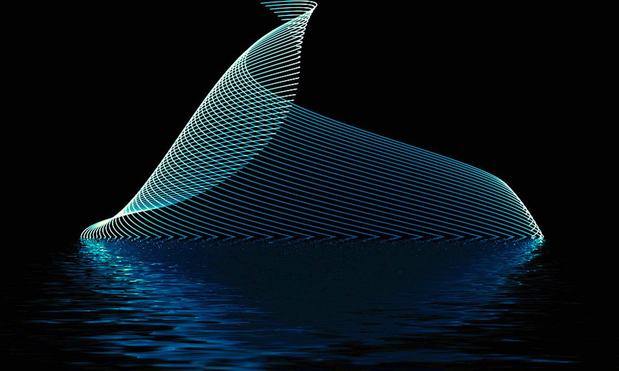 muri d'acqua digitali
