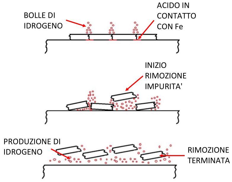 fasi primarie trattamento acidi